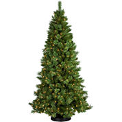7' Pre-Lit Sheridan Pine Cashmere-Style Clear Lights Christmas Tree