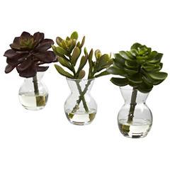 Nearly Natural Succulent Arrangements Set of 3