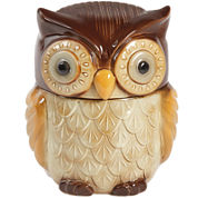 Gibson Home® Owl Cookie Jar
