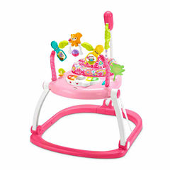 Fisher Price Floral Confetti Spacesaver Jumperoo