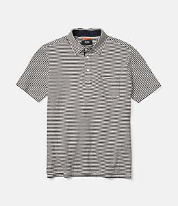 Warren Stripe Polo