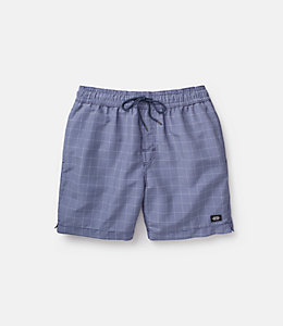 Grannis Graph Check Swim Trunks