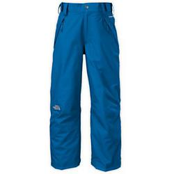 The North Face Boys Freedom Insulated Pants - Sale
