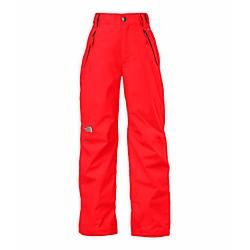 photo: The North Face Boys' Freedom Insulated Pant snowsport pant