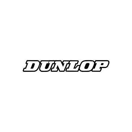 2013 Factory Effex Generic Fork / Swingarm Stickers - Dunlop - Main