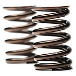 Faction MX Valve Spring Kit - Faction MX Dirt Bike Products