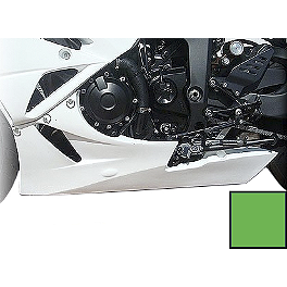 Hotbodies Racing Color Form Race Lower - 2009 Kawasaki ZX600 - Ninja ZX-6R Hotbodies Racing Rear Tire Hugger - Black