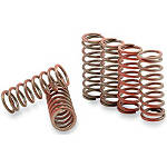 Hinson Clutch Spring Kit - Hinson ATV Clutch Kits and Components
