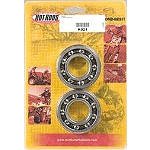Hot Rods Crank Bearing - HOT RODS ATV Parts
