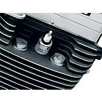 Kuryakyn Head Bolt Covers - Plain - Cruiser Chrome Hardware and Accessories