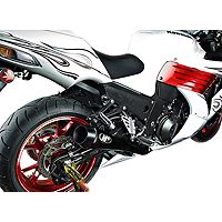 M4 Retro Drag Dual Slip On Exhaust