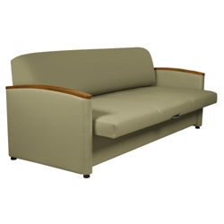 Sleeper Sofa with Pull-Out Cushions, 25114