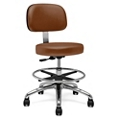 Physician Stool with Back Rest and Foot Ring, 25893