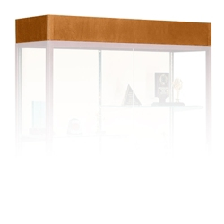 Light Fixture for Display Case, 31172