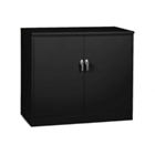 "48""W x 18""D x 42""H Counter Height Jumbo Storage Cabinet, 31722"
