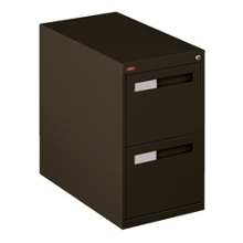 Two Drawer Letter Size Vertical File, 34118
