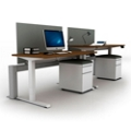 "Set of Two 60""W Height Adjustable Desks with Privacy Screens & Mobile Files, 14145"