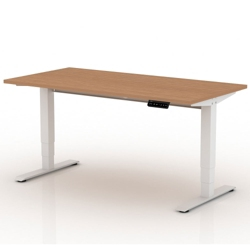 """Sit-to-Stand Height Adjustable Desk - 60""""W x 30""""D, 14136"""