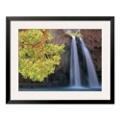 "33""W x 27""H Havasu Falls Print, 85714"