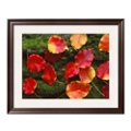 "33""W x 27""H Fall Leaves Print, 85724"