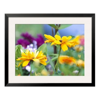 "33""W x 27""H Cherokee Sunset Flowers Print, 85725"