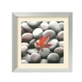 Leaf on Stone by Glen and Gayle Wans - Framed Photography Print, 87640