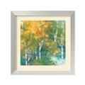 Confetti I by Julia Purinton - Framed Art Print, 87648