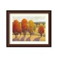 Day Glow II by Tim O'Toole - Framed Art Print, 87649