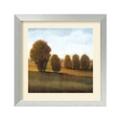 After Light VI by Tim O'Toole - Framed Art Print, 87661
