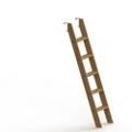 Bunkbed Ladder, 87687
