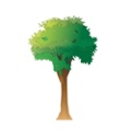 "Tall Tree Pediatric Wall Sticker - 78""H, 82030"