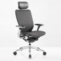 High Back Mesh Ergonomic Computer Chair with Black Frame, 57014