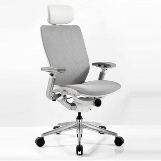 High Back Mesh Ergonomic Computer Chair with White Frame, 57015