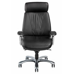 Leather Executive Chair with Chrome Frame, 57128