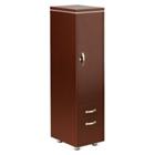 "Reveal 63""H Wardrobe Cabinet, CD08459"