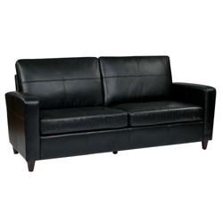 Eco Leather Contemporary Sofa, 53003