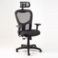 Mesh Executive Chair with Headrest, 50991