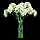 "Agapanthus in Glass Vase - 30""H, 87693"