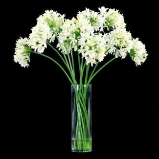 "Agapanthus in Glass Vase - 30""H, 87693"