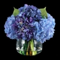 "Hydrangea With Greenery - 10""H, 87694"