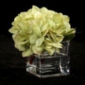 "Set of Six Hydrangeas in Vases - 6""H, 87703"