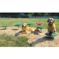 Stepping Paws Exercise Set, 82305
