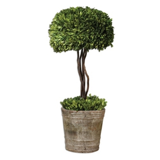 """Preserved Boxwood Single Sphere Topiary - 33""""H, 90106"""