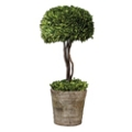 "Preserved Boxwood Single Sphere Topiary - 33""H, 90106"