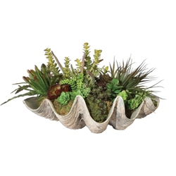 "Sea Coast Succulents - 26""W x 15""H, 90110"