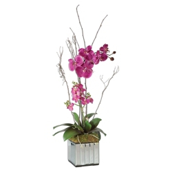 """Faux Kaleama Orchids in Mirrored Cube - 15""""W x 38""""H, 90112"""