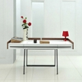 Modern High Gloss Desk with Veneer Accents, 14299