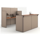 Two Piece Reception Station, 21206