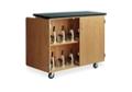 Rolling Microscope Storage Cabinet, 46536