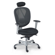 Mesh Chair with Headrest and Titanium Finish Accents, 50737